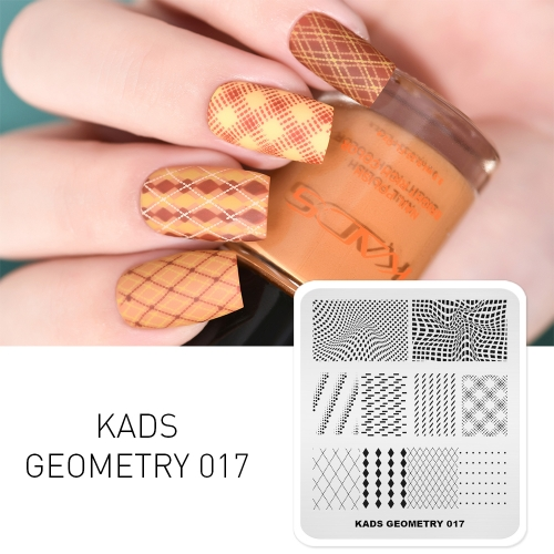 GEOMETRY 017 Nail Stamping Plate 3D Geometry Lattice Dot